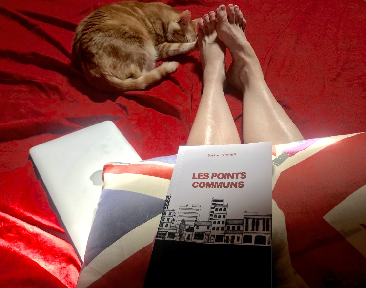 Clifton, le chat give me five pendant que je lis un des 5 livres de mon futur article