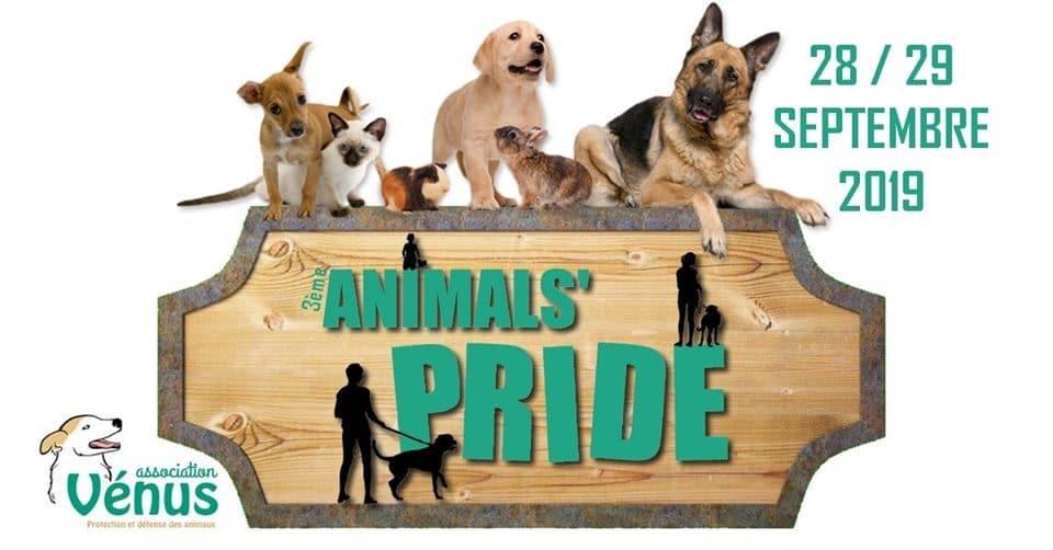 Un événement dédié à la cause animale à Bordeaux